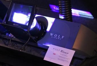 wolf_sdc_3